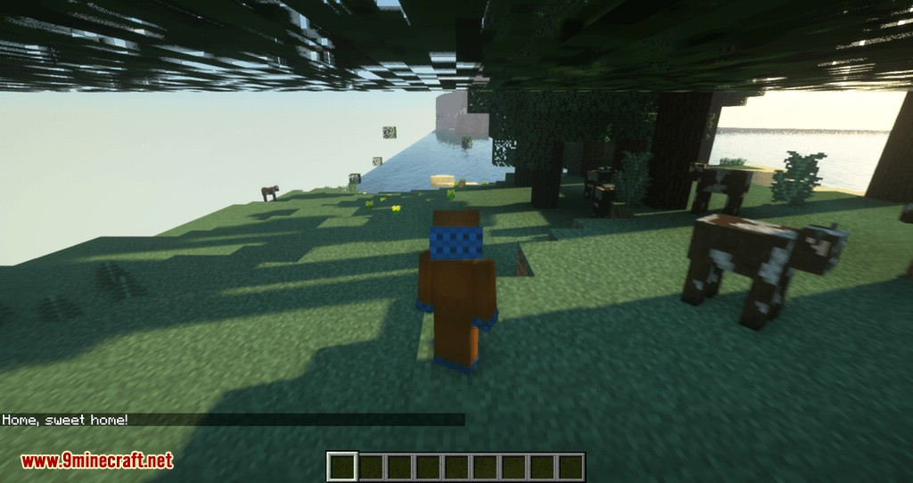 get back to home mod for minecraft 07