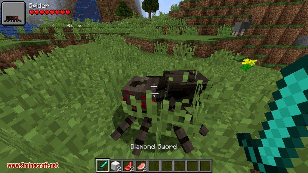 Ama_s Damage Inidicator mod for minecraft 05
