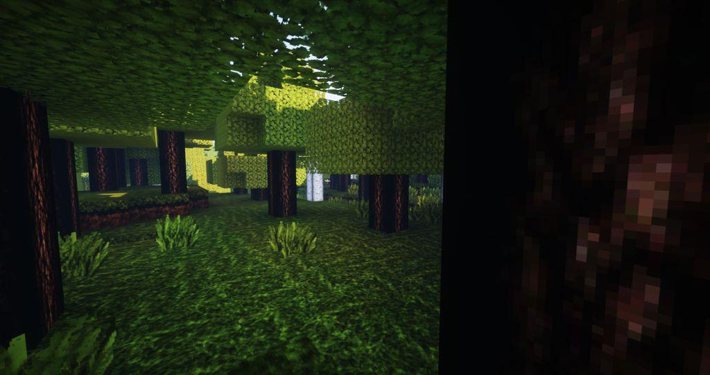 ReaLife Resource Pack Screenshots 7