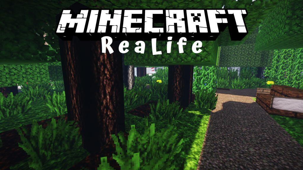 ReaLife Resource Pack