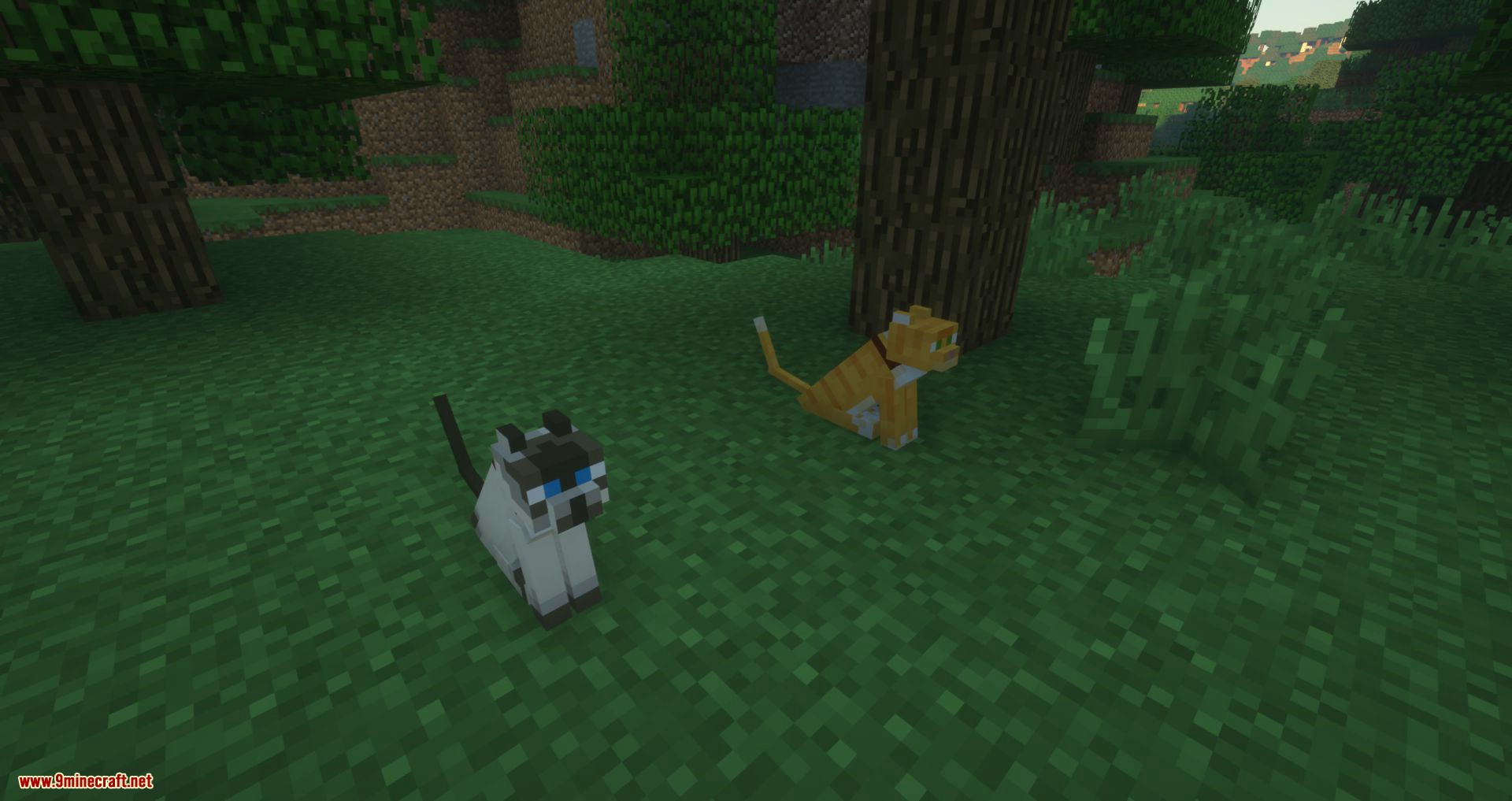 Not Enough Cats mod for minecraft 01