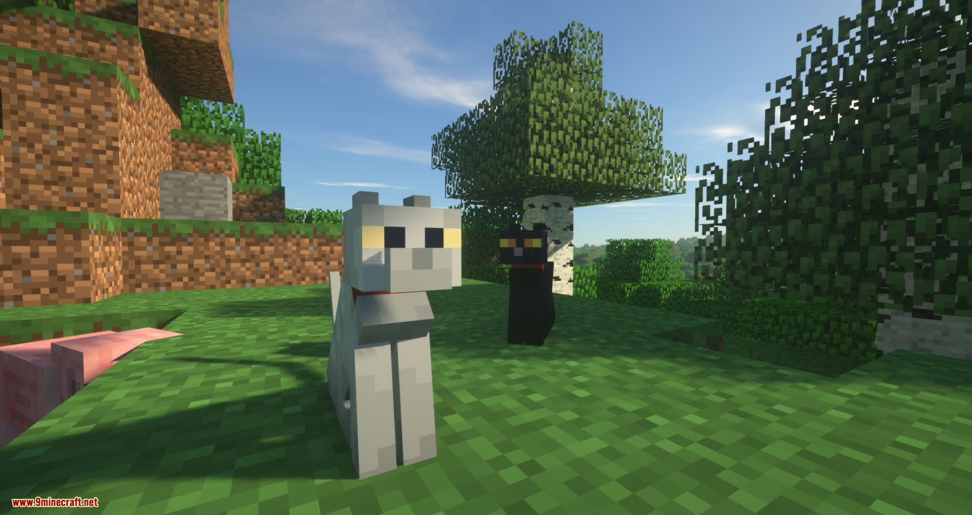 Not Enough Cats mod for minecraft 02