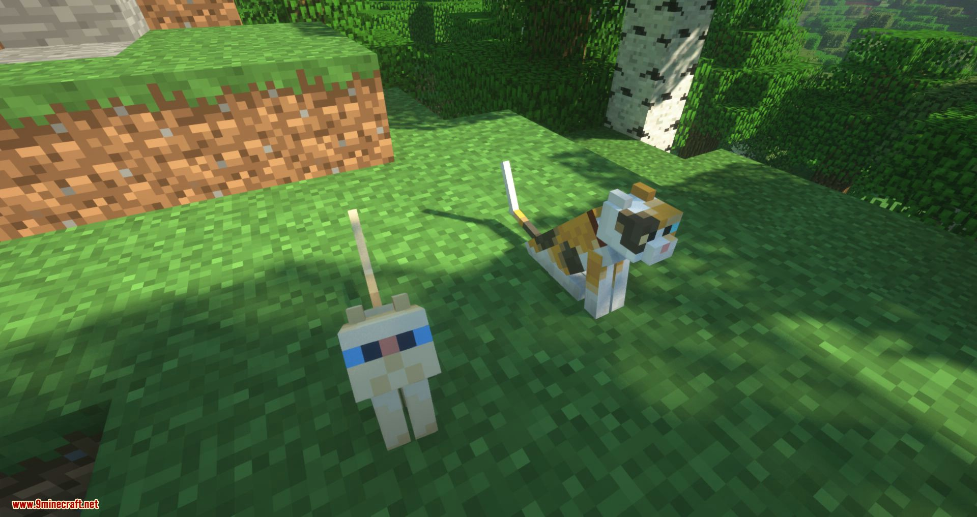 Not Enough Cats mod for minecraft 03
