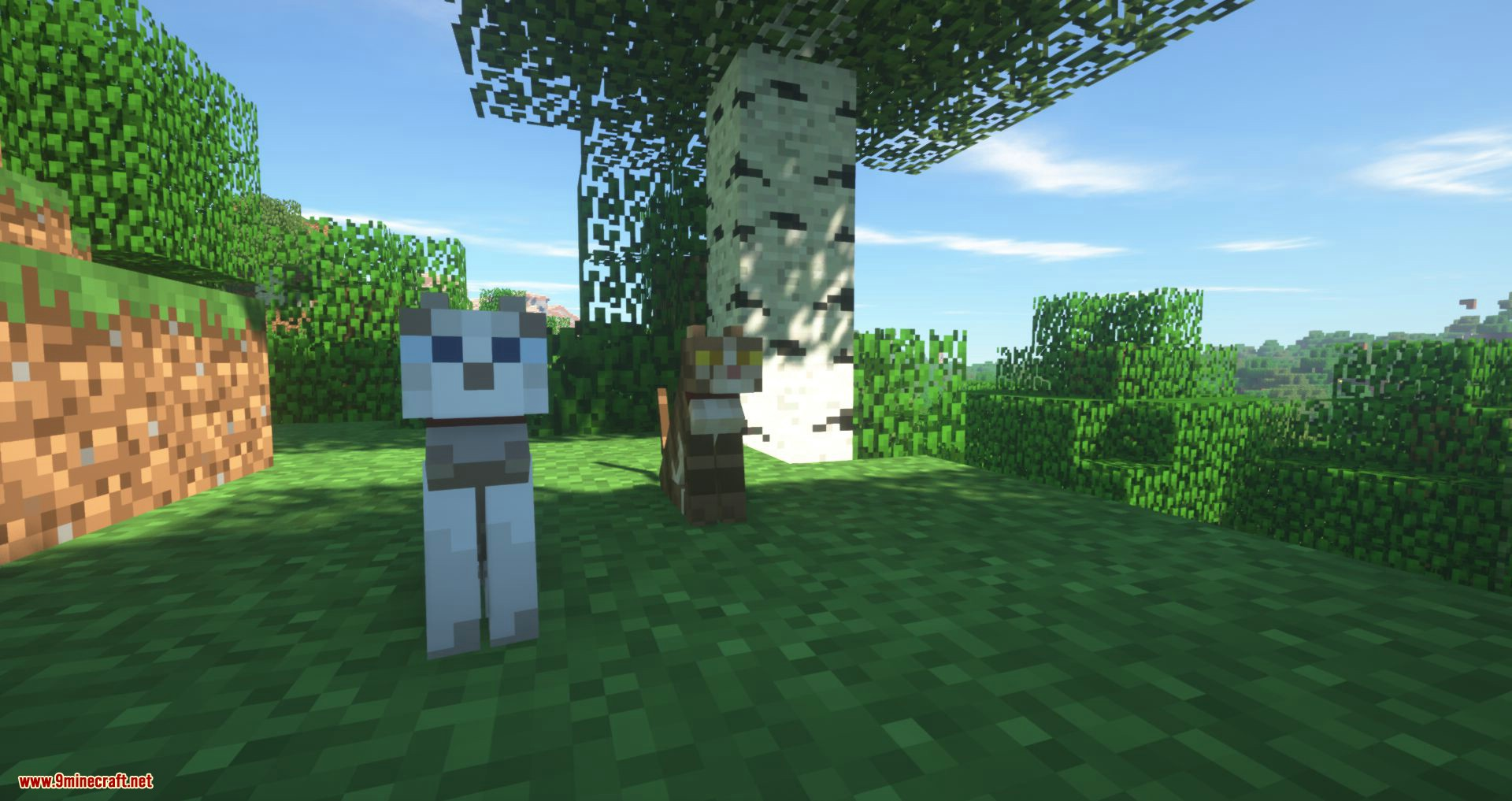 Not Enough Cats mod for minecraft 04