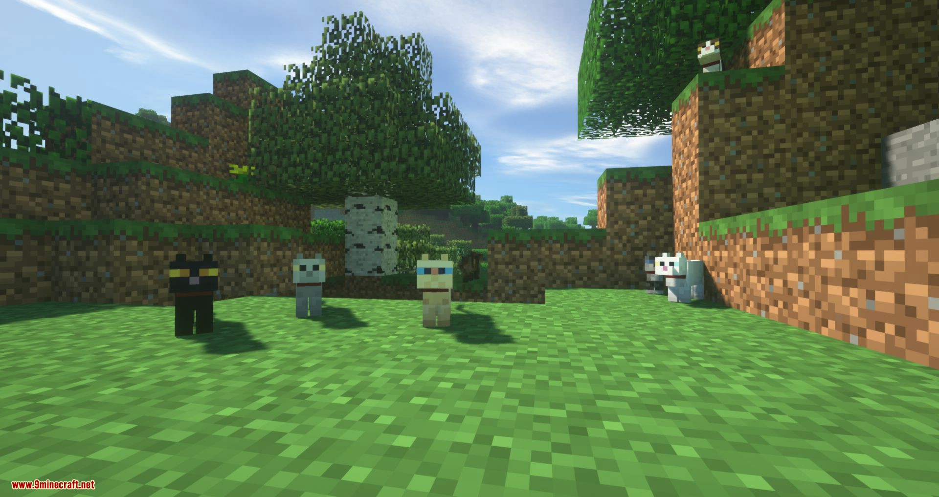 Not Enough Cats mod for minecraft 10