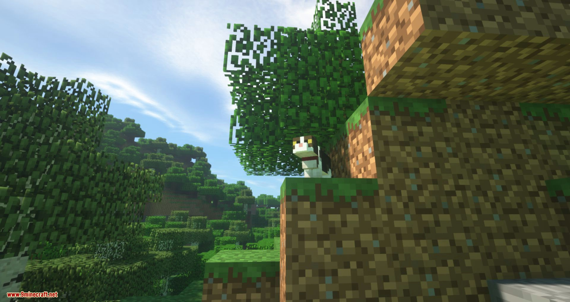 Not Enough Cats mod for minecraft 11