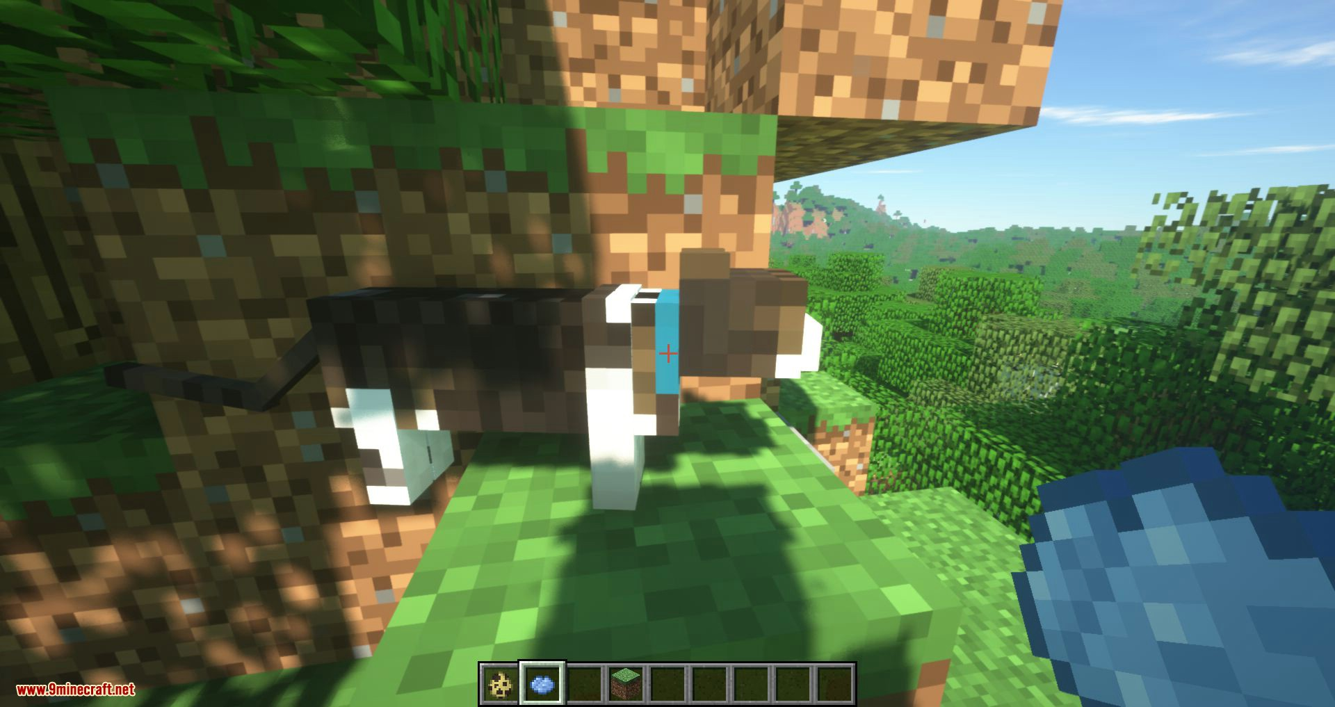 Not Enough Cats mod for minecraft 12
