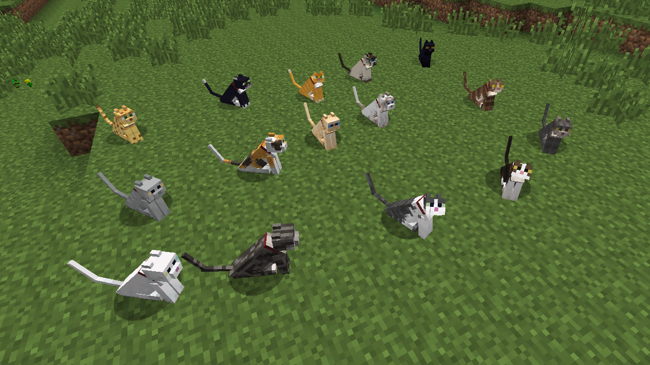 Not Enough Cats mod for minecraft 21