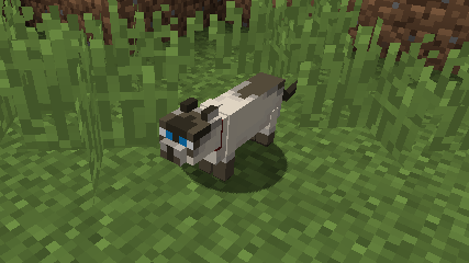 Not Enough Cats mod for minecraft 25