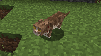 Not Enough Cats mod for minecraft 31