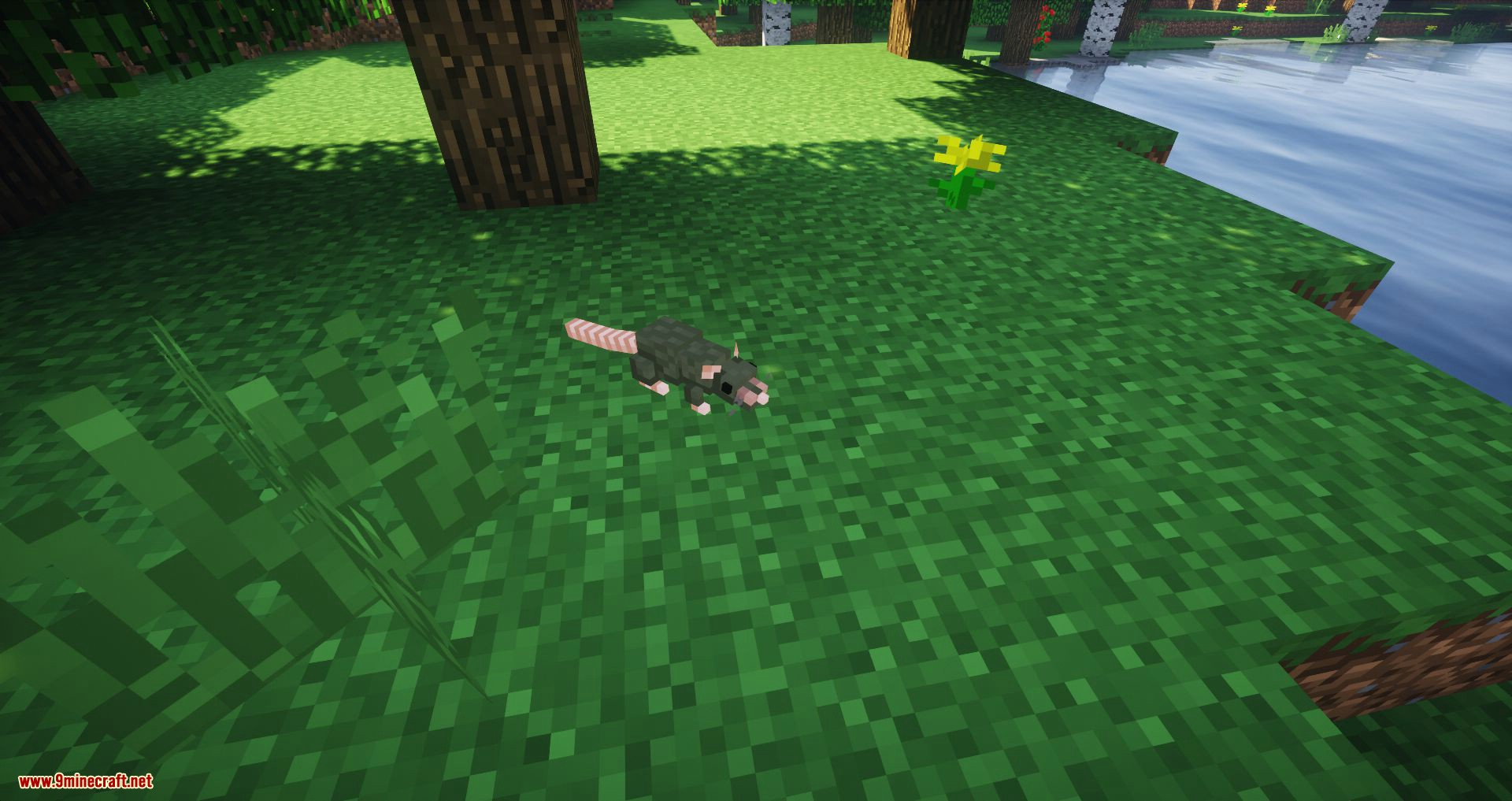 Rats mod for minecraft 01