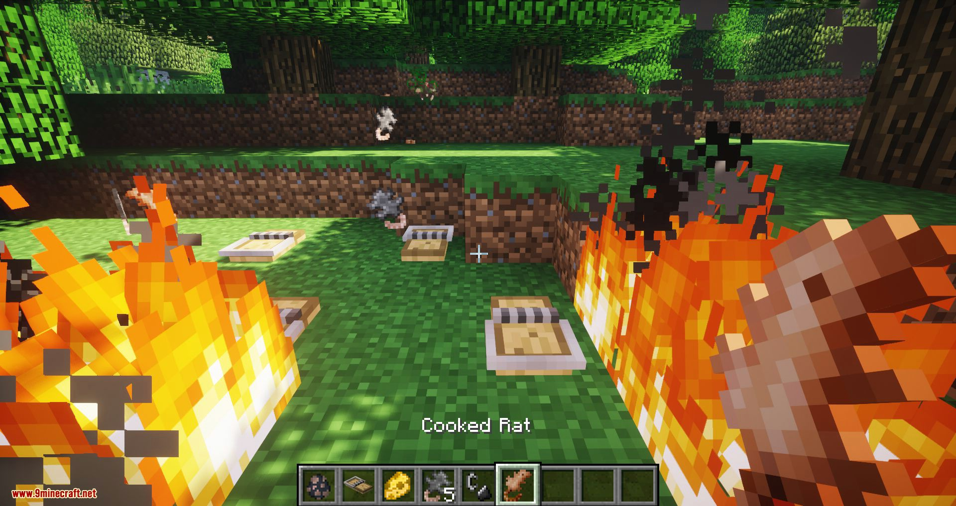 Rats mod for minecraft 06