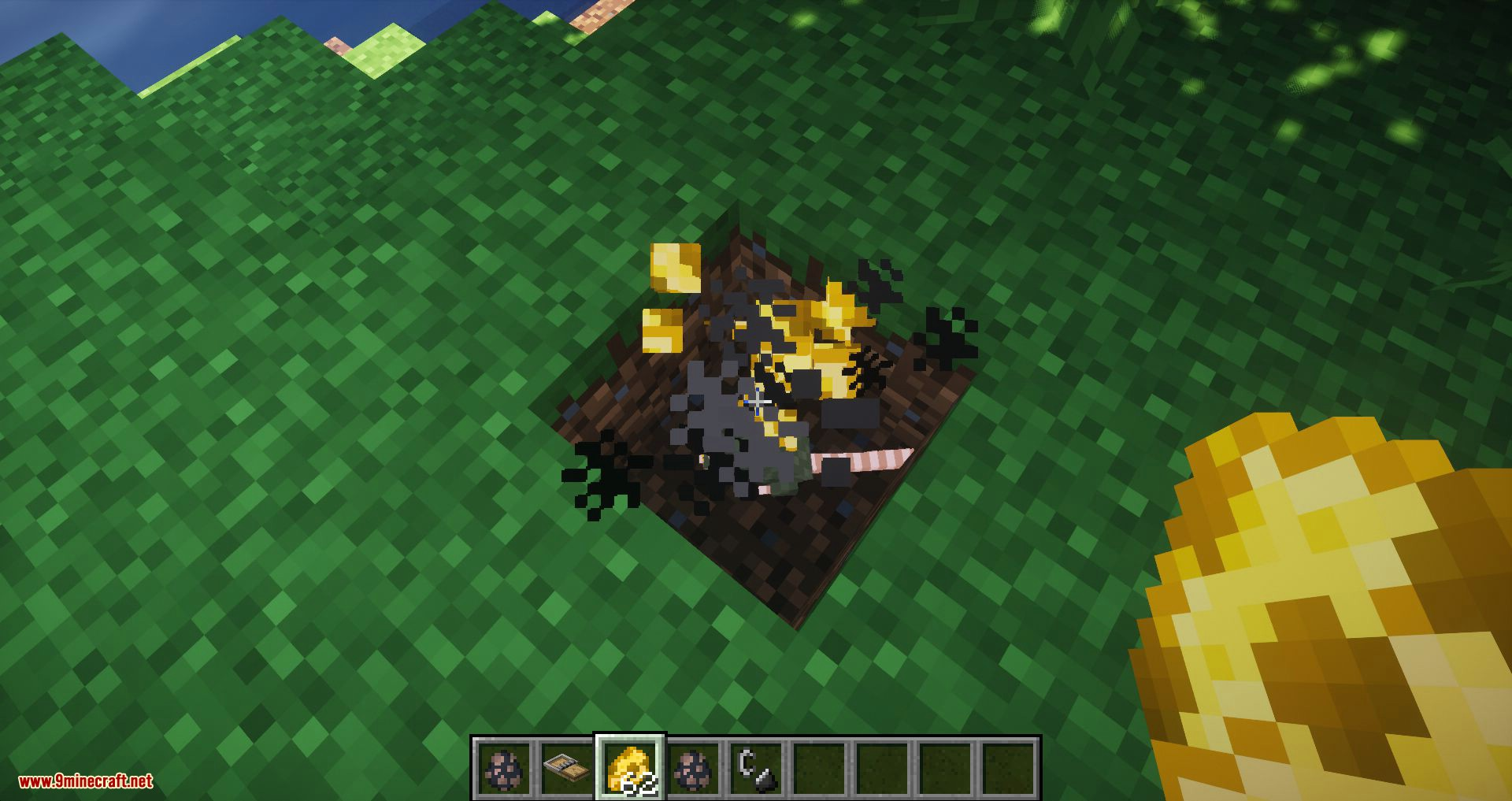 Rats mod for minecraft 07