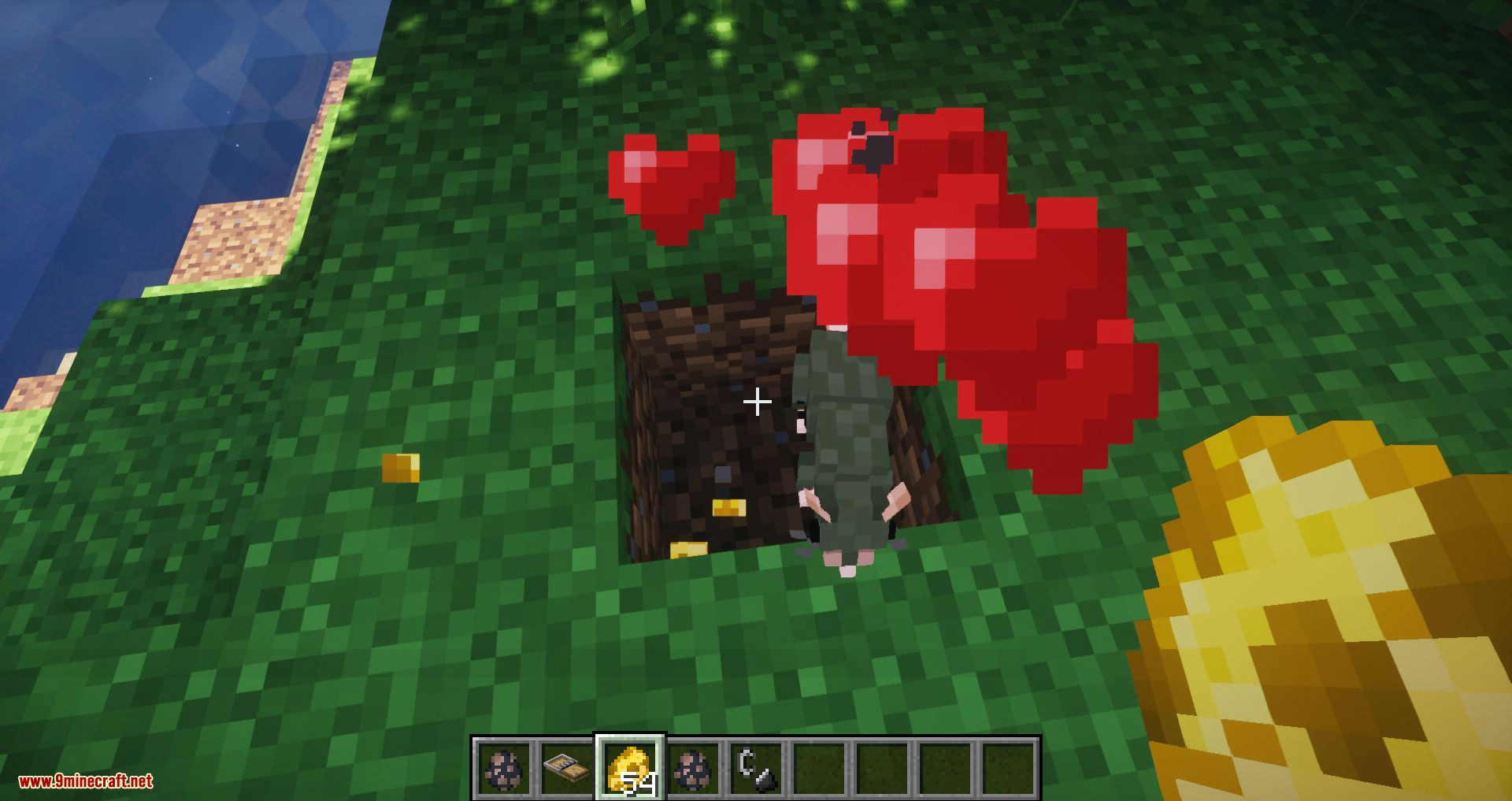 Rats mod for minecraft 09