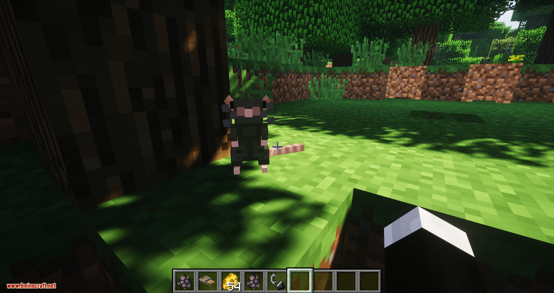 Rats mod for minecraft 11