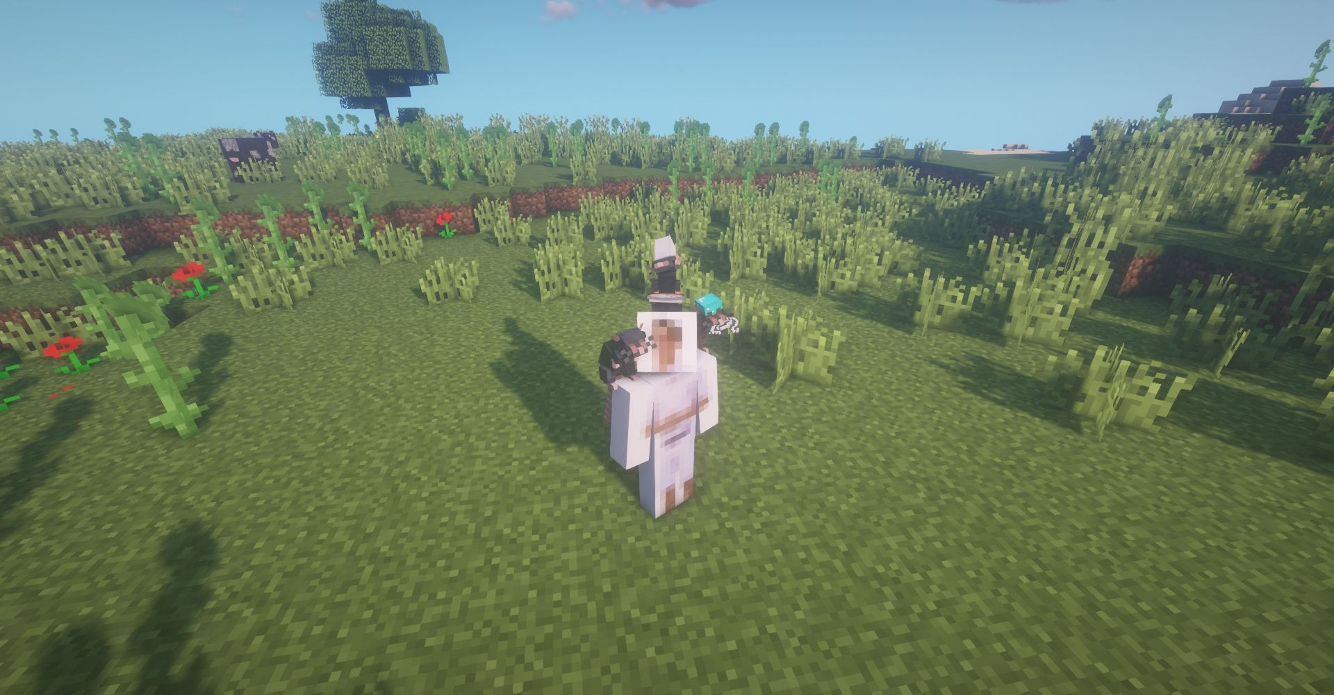 Rats mod for minecraft 40