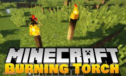 Burning Torch mod for minecraft logo