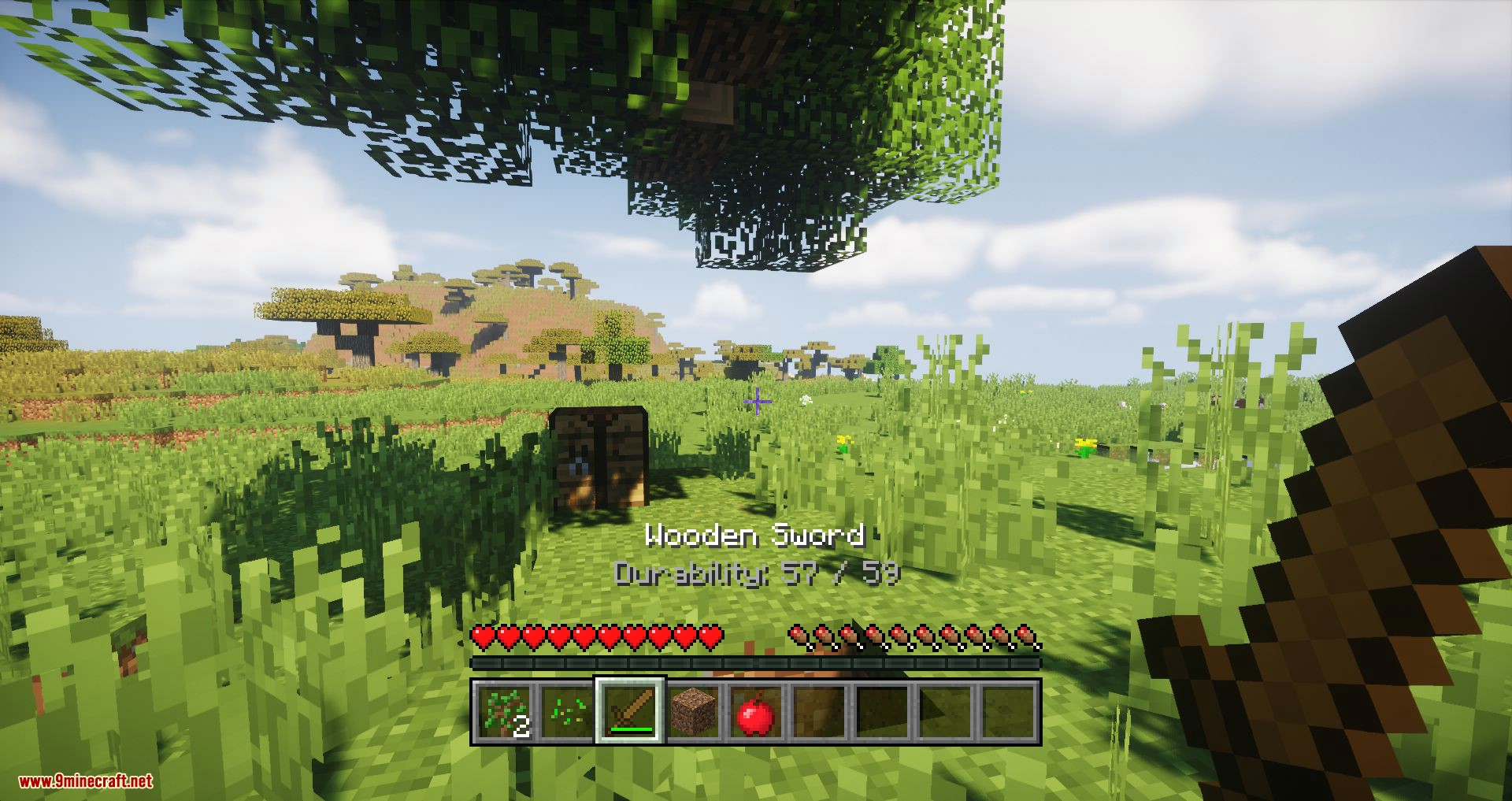 Console HUD mod for minecraft 05