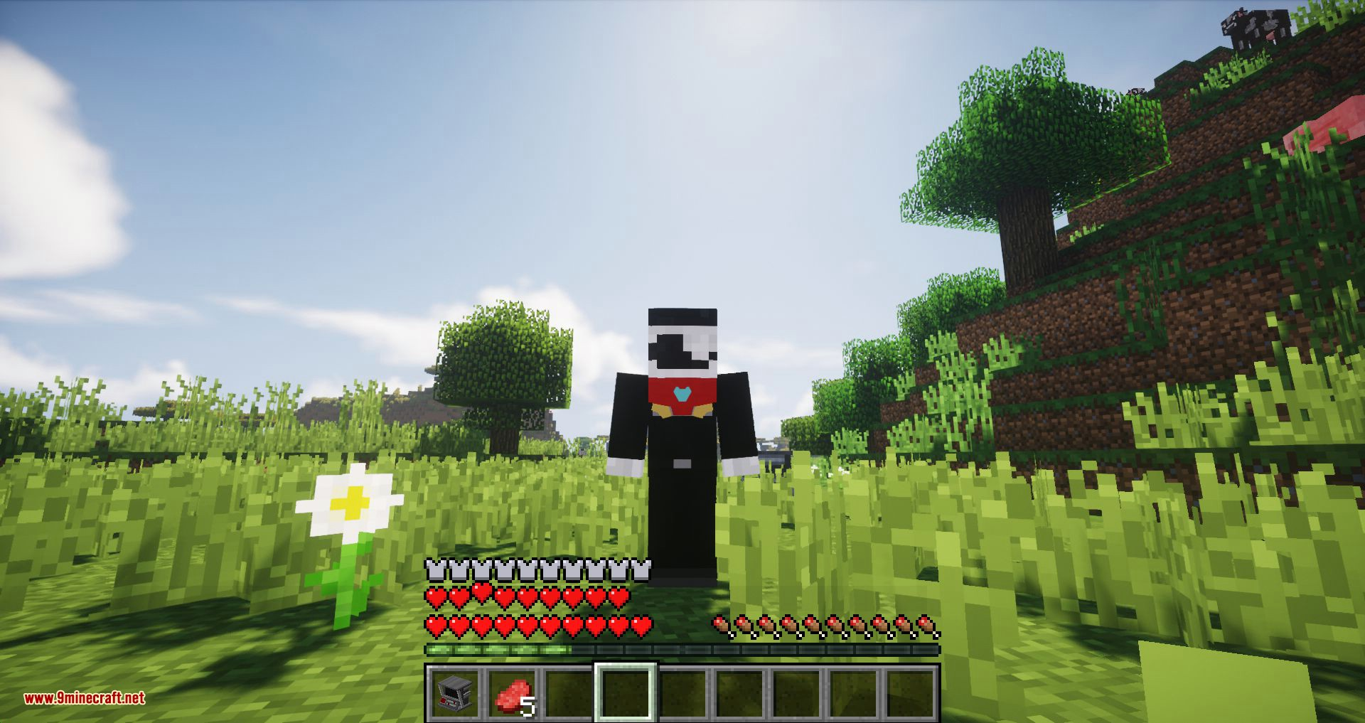 Typical Heroes mod for minecraft 09