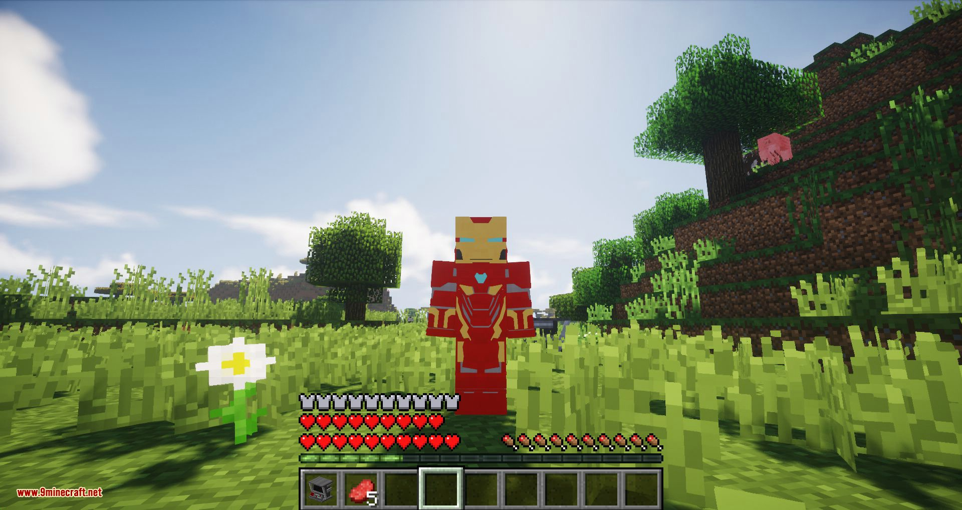Typical Heroes mod for minecraft 11