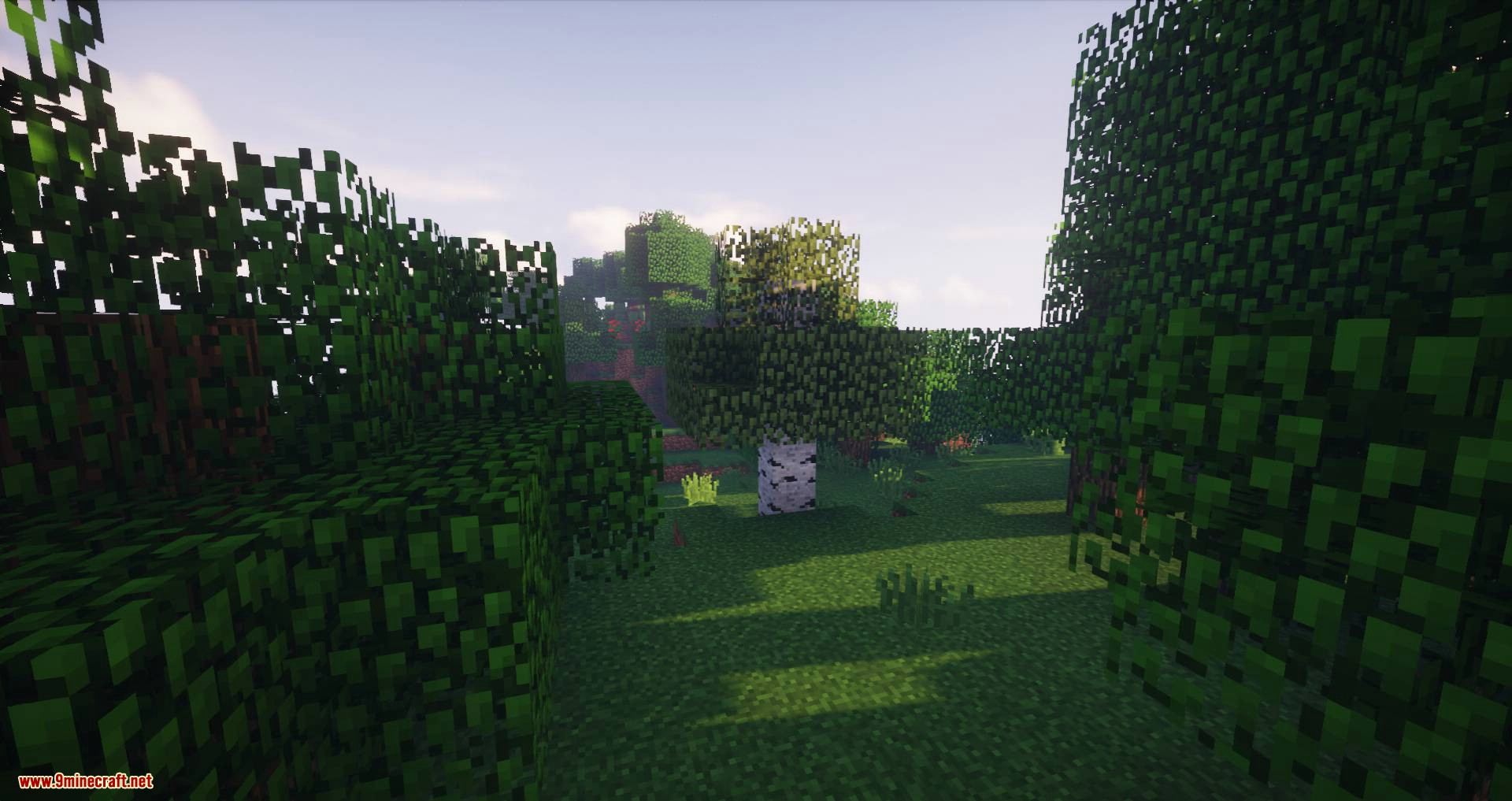 Biome Growth Controls mod for minecraft 01