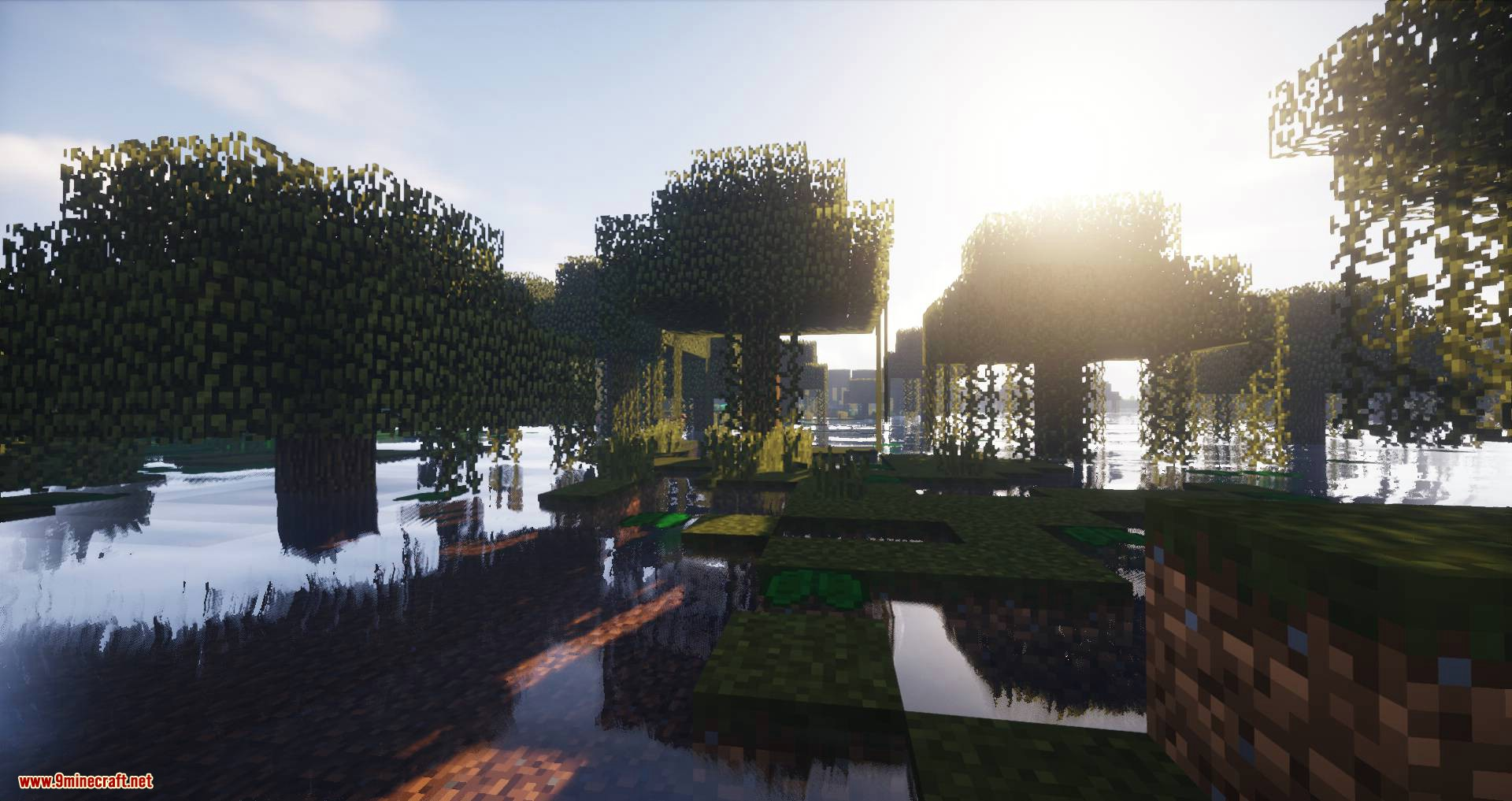 Biome Growth Controls mod for minecraft 08