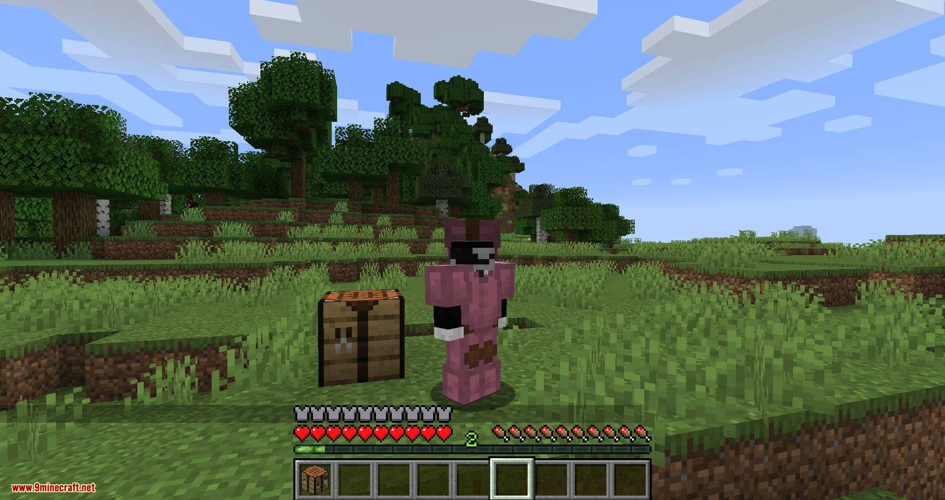 Cosmetic Armor Slots mod for minecraft 07