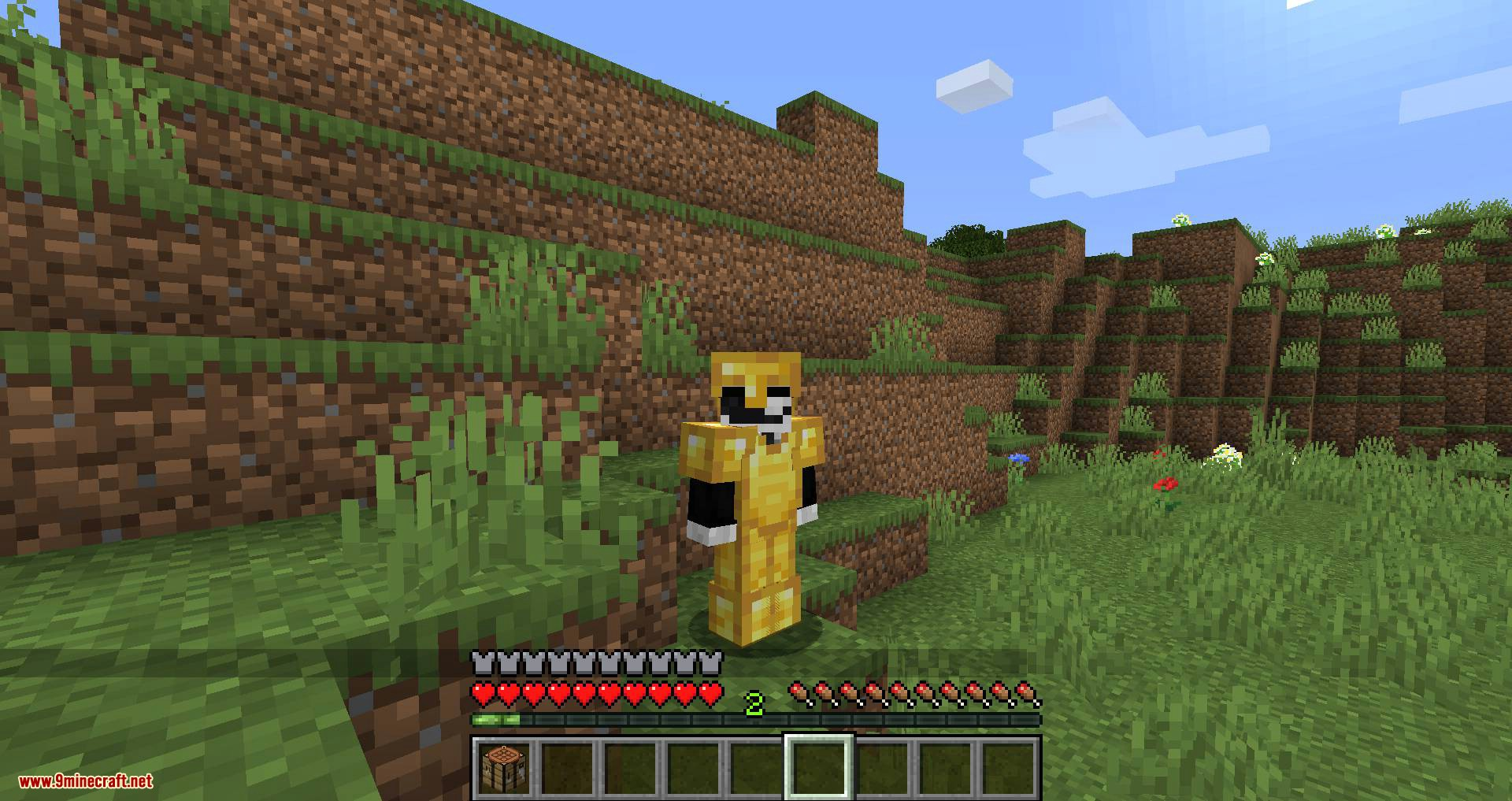 Cosmetic Armor Slots mod for minecraft 11