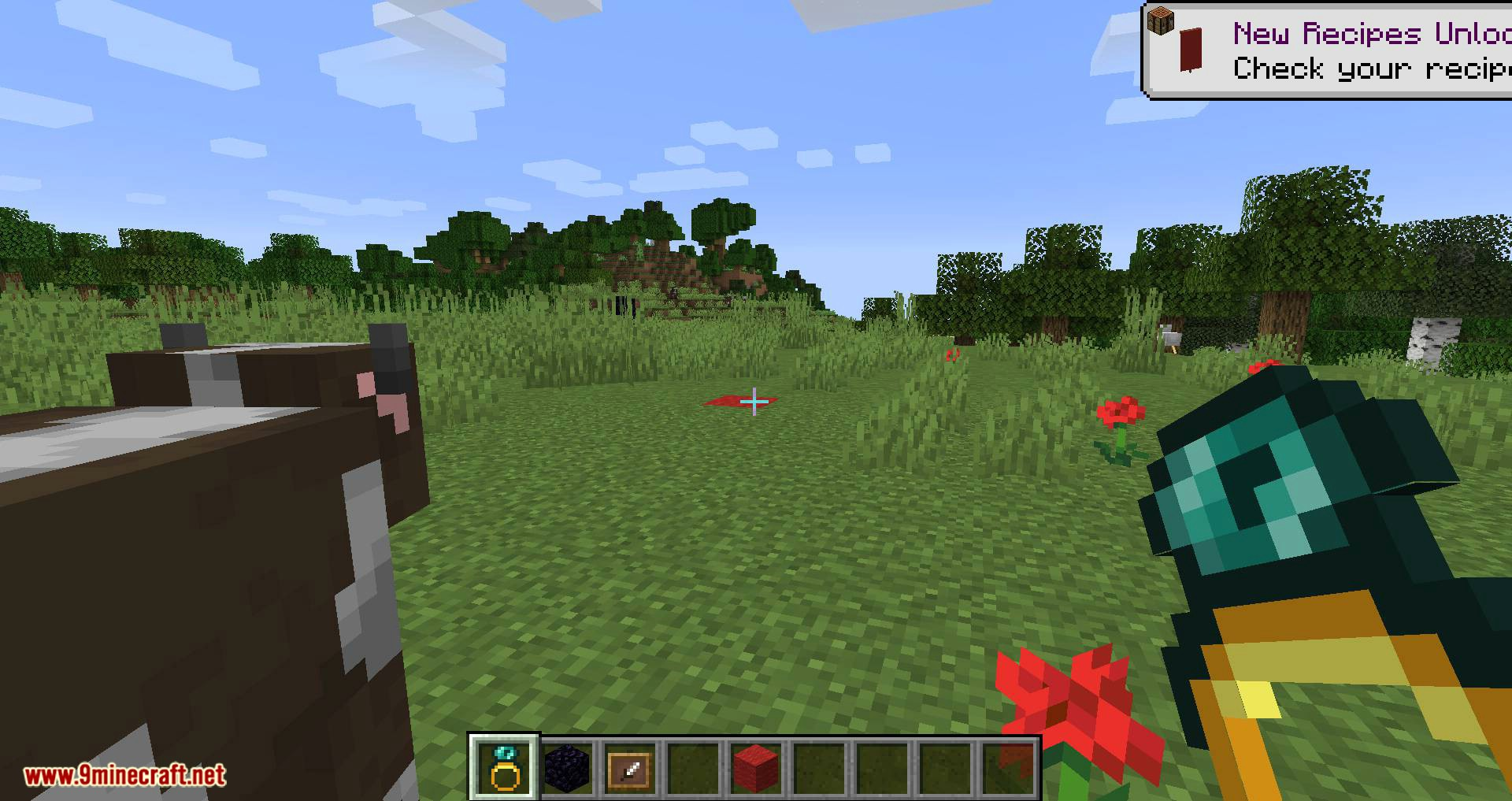 Ring of Blink mod for minecraft 05