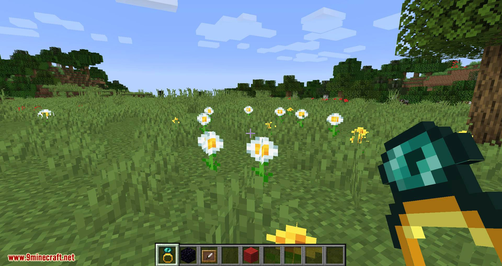 Ring of Blink mod for minecraft 09