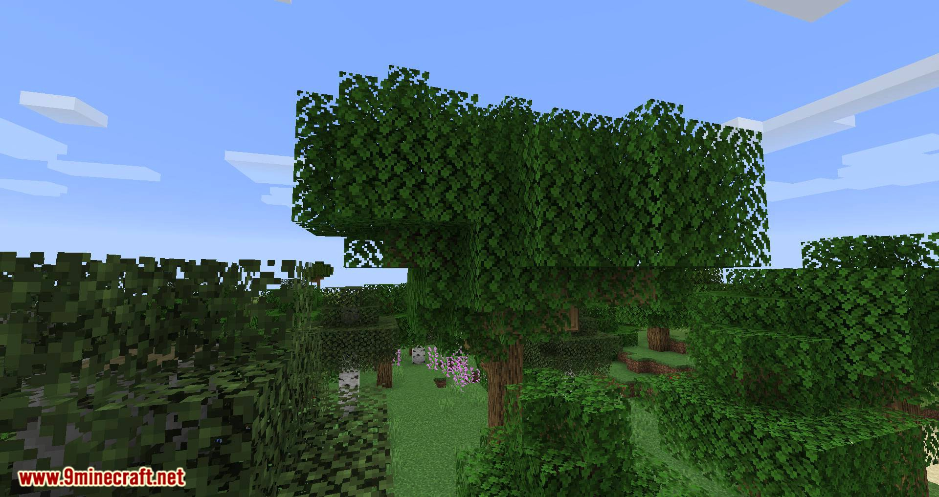 Bird Nests and Treasures mod for minecraft 01
