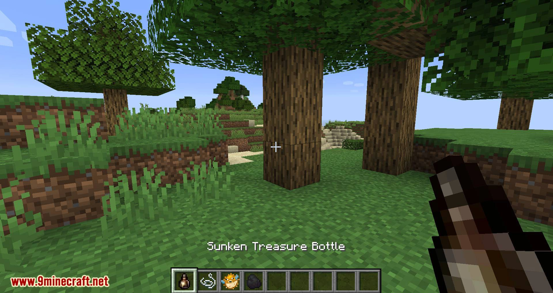 Bird Nests and Treasures mod for minecraft 10