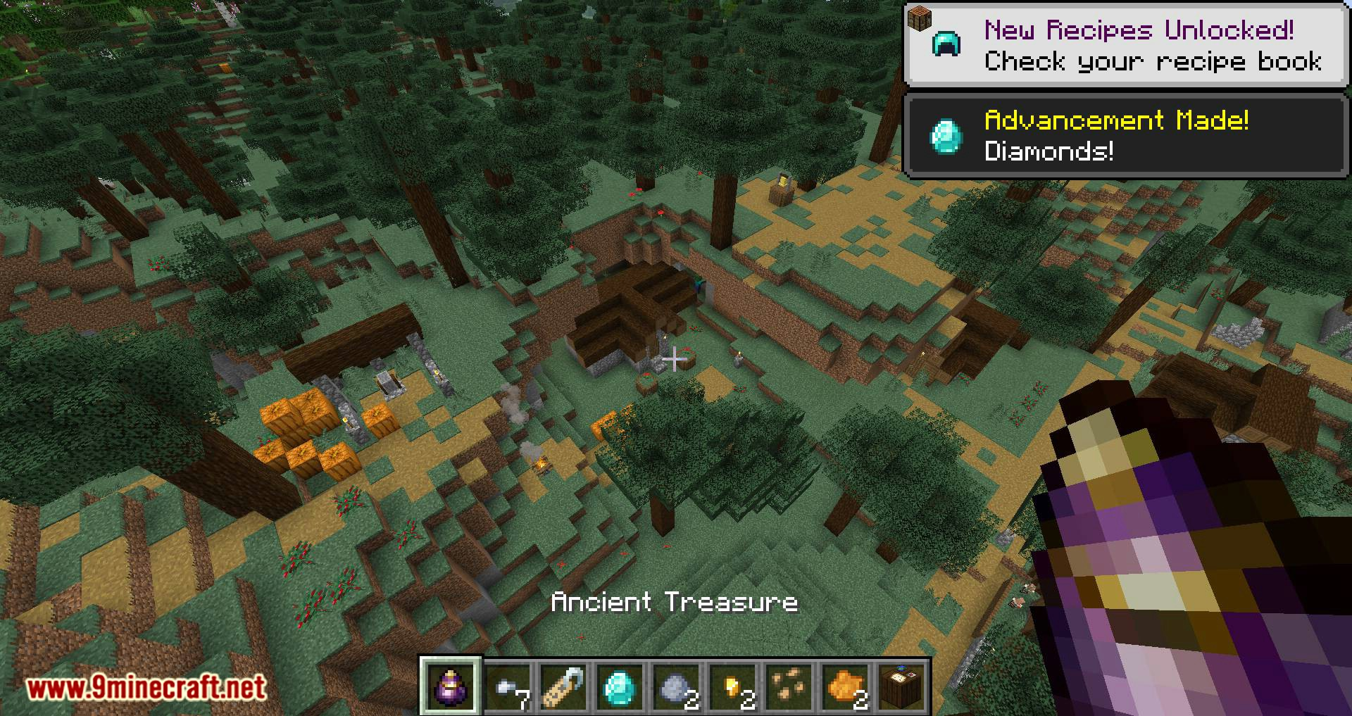 Bird Nests and Treasures mod for minecraft 14