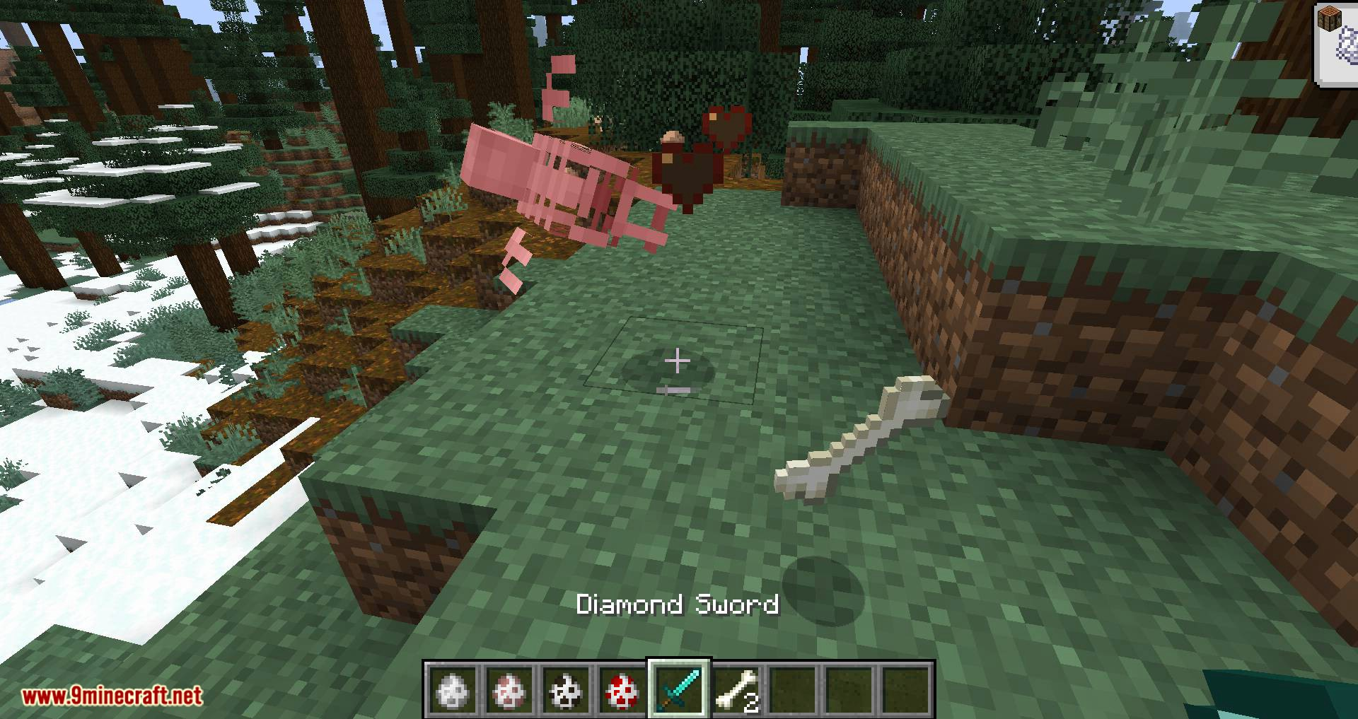 Bones mod for minecraft 05