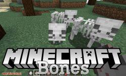 Bones mod for minecraft logo
