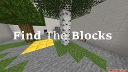 Find The Blocks Map Thumbnail