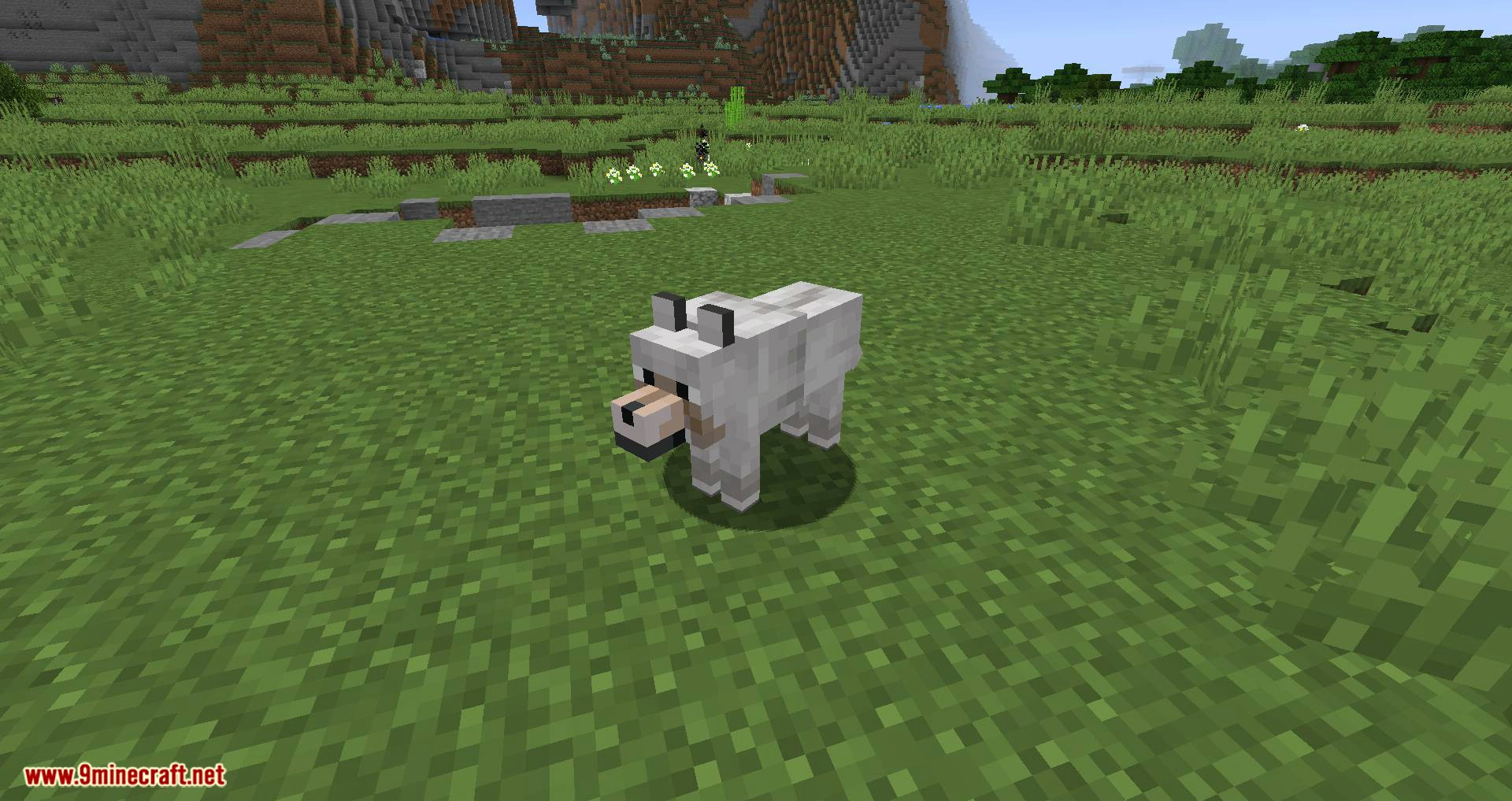 Let Sleeping Dogs Lie mod for minecraft 01