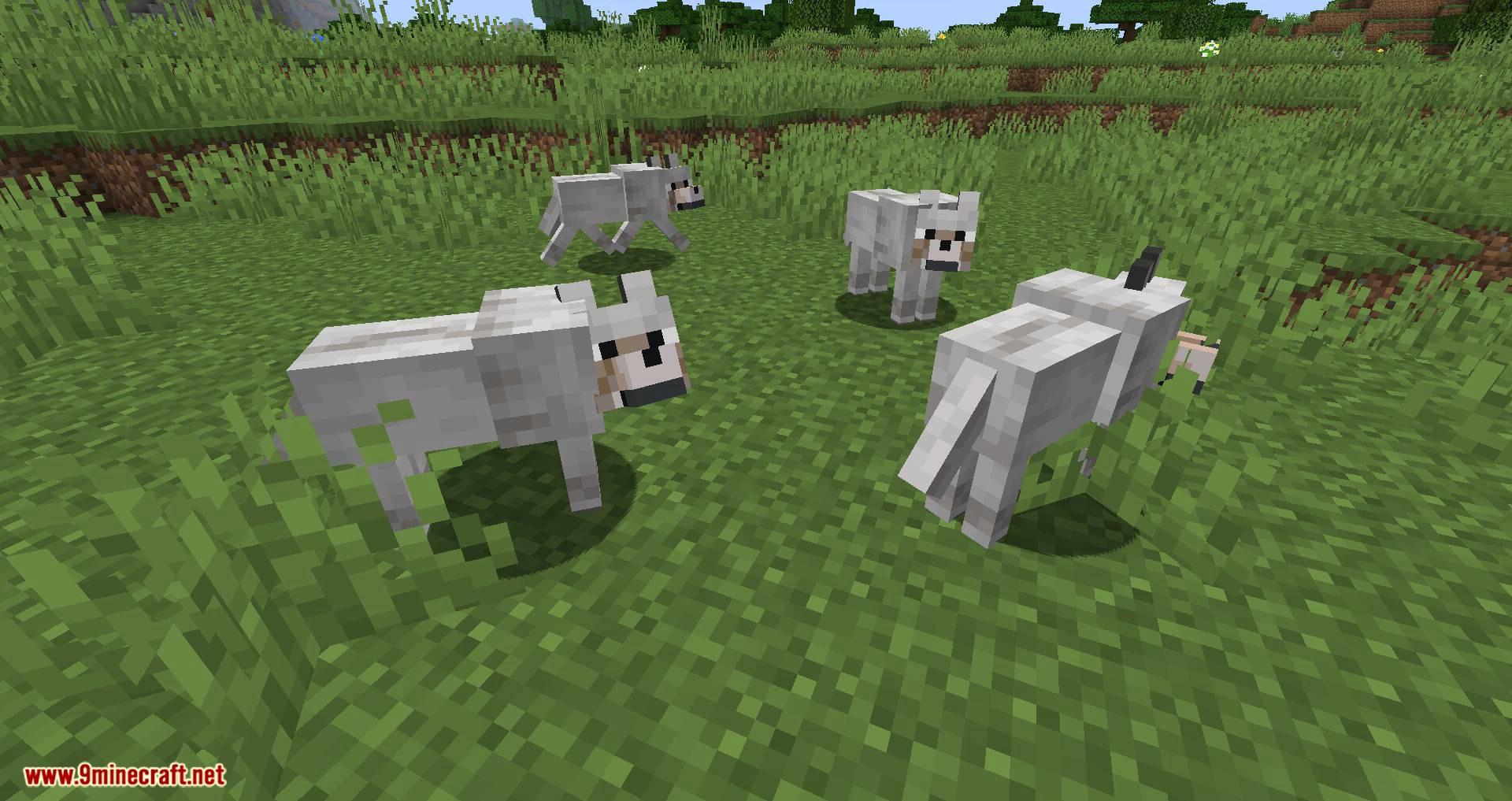 Let Sleeping Dogs Lie mod for minecraft 02