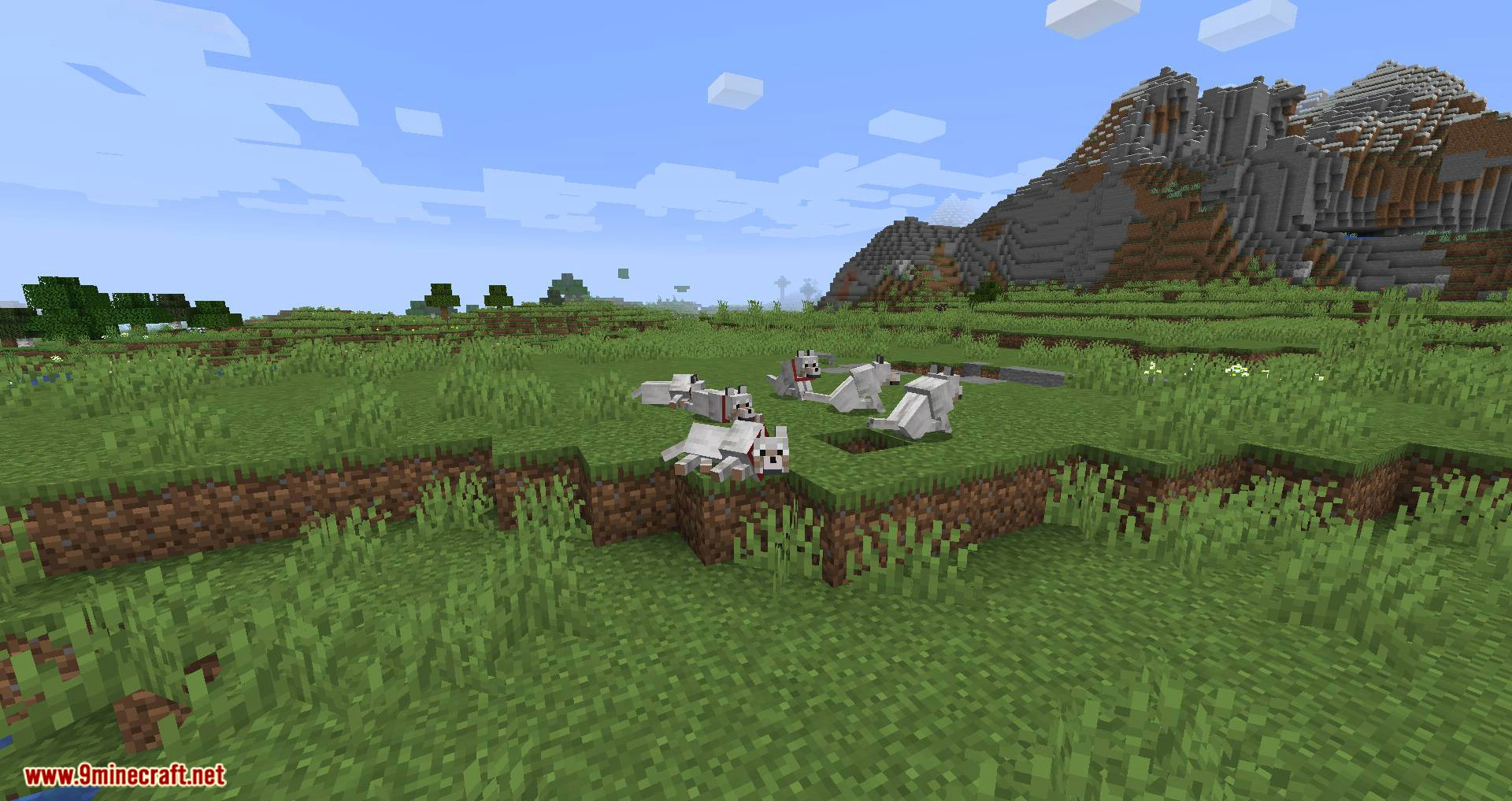 Let Sleeping Dogs Lie mod for minecraft 10