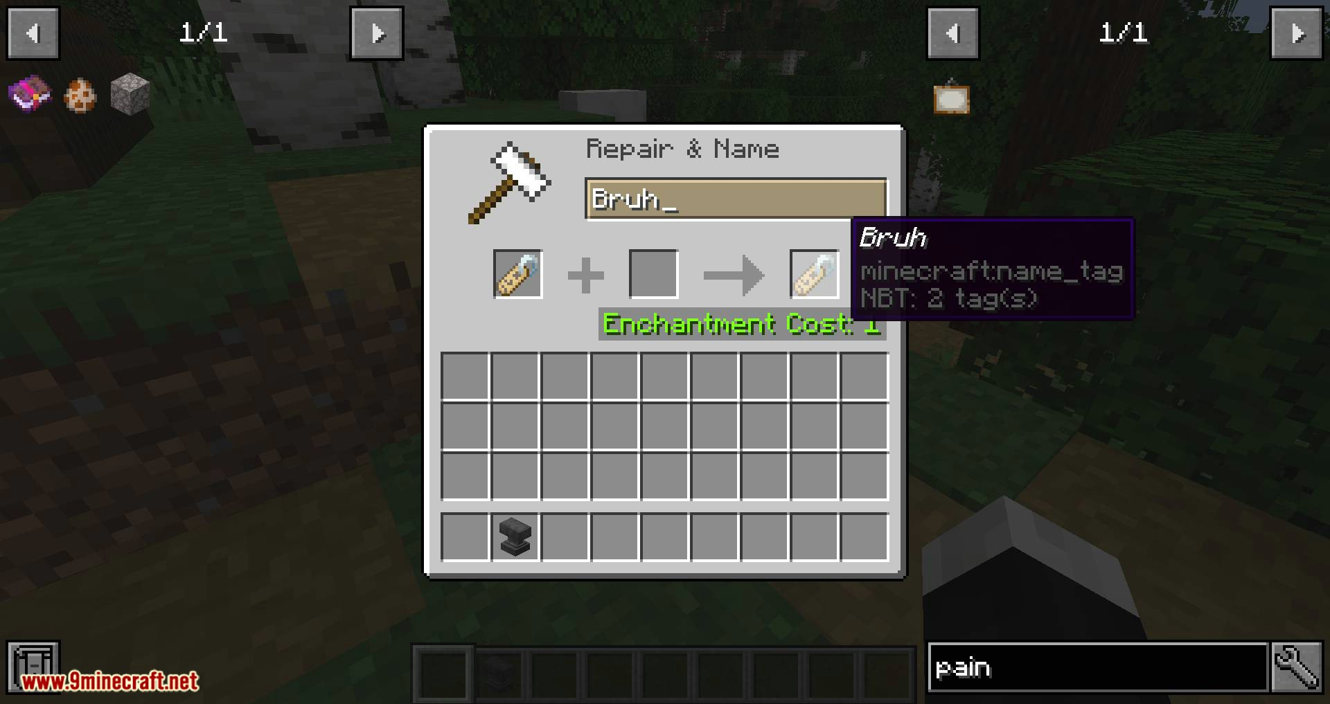 Nametags Without Anvils mod for minecraft 01