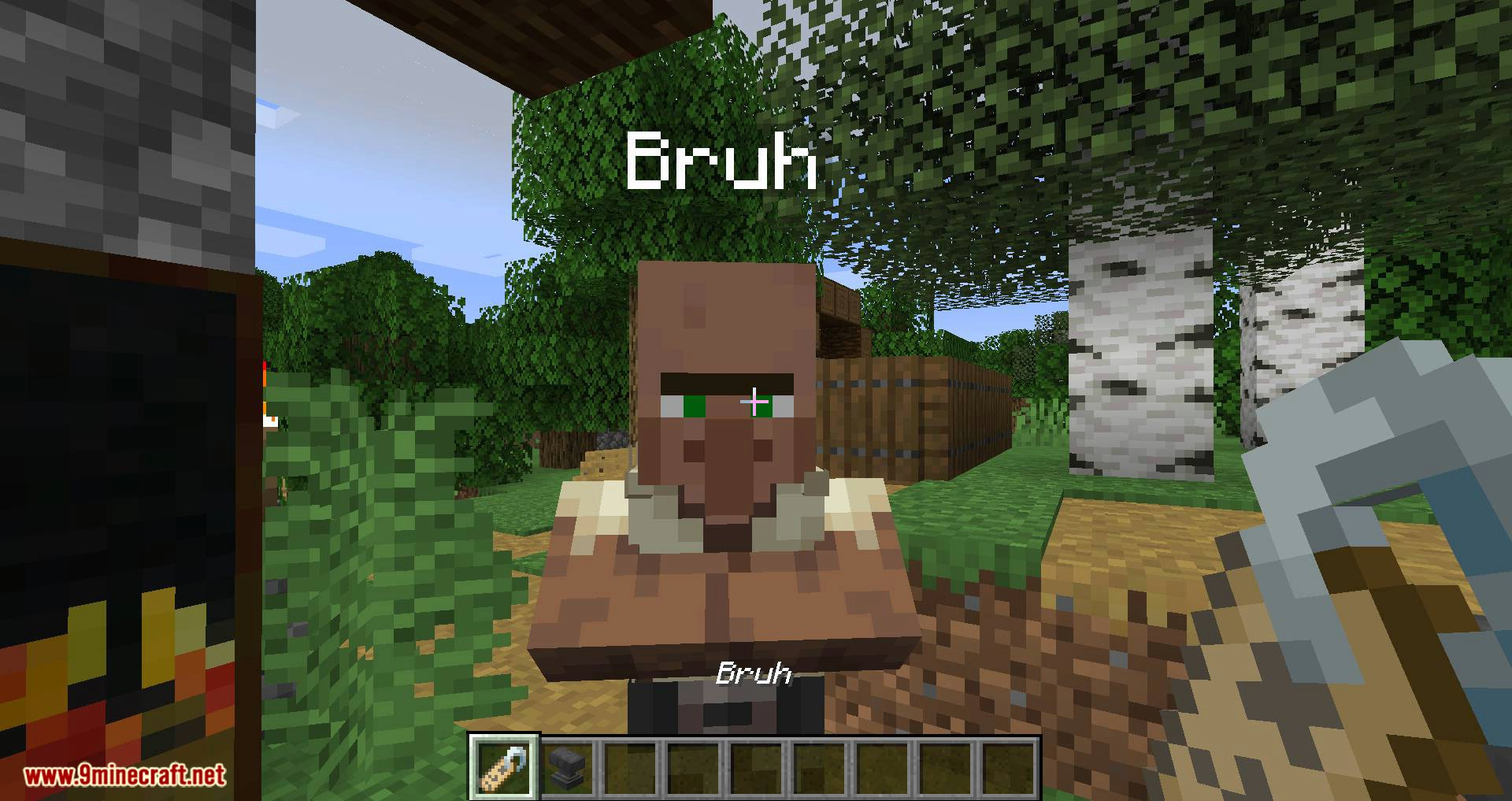 Nametags Without Anvils mod for minecraft 02