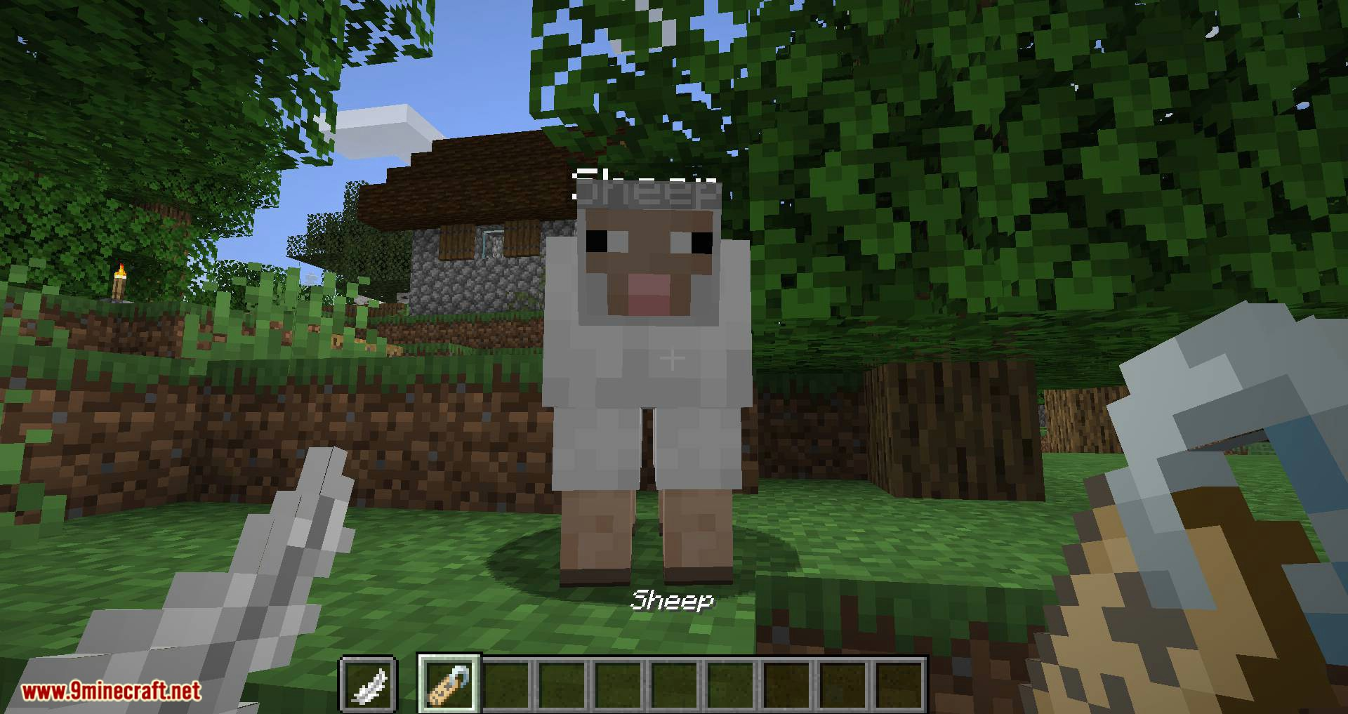 Nametags Without Anvils mod for minecraft 04