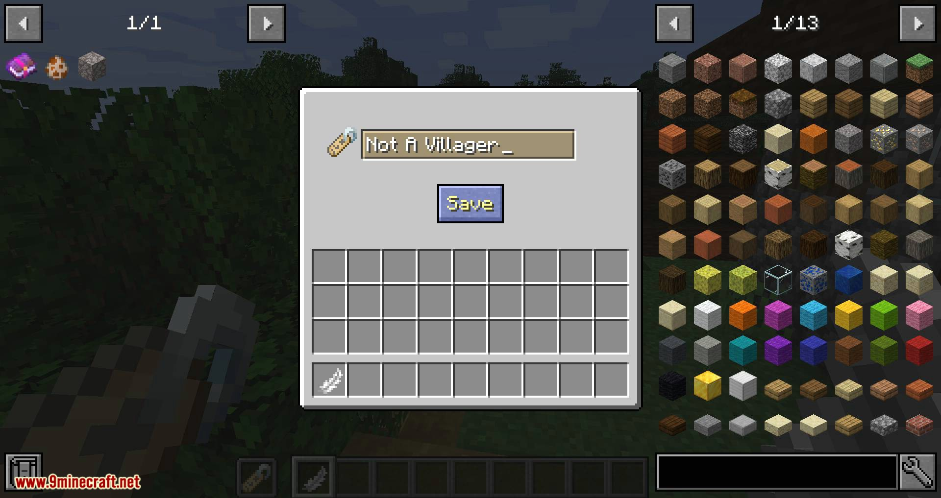 Nametags Without Anvils mod for minecraft 09