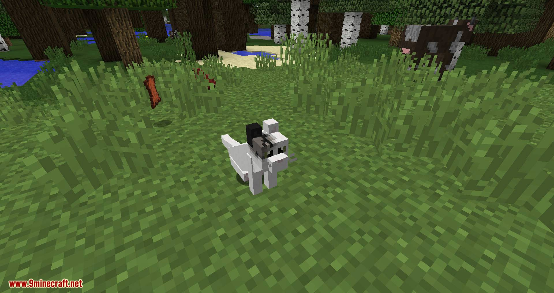 Simply Cats mod for minecraft 02