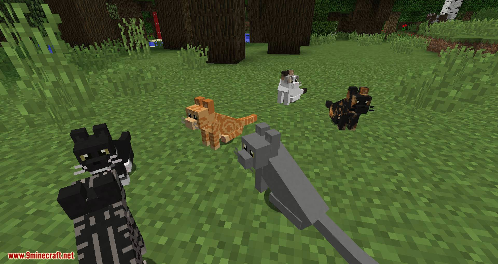 Simply Cats mod for minecraft 04
