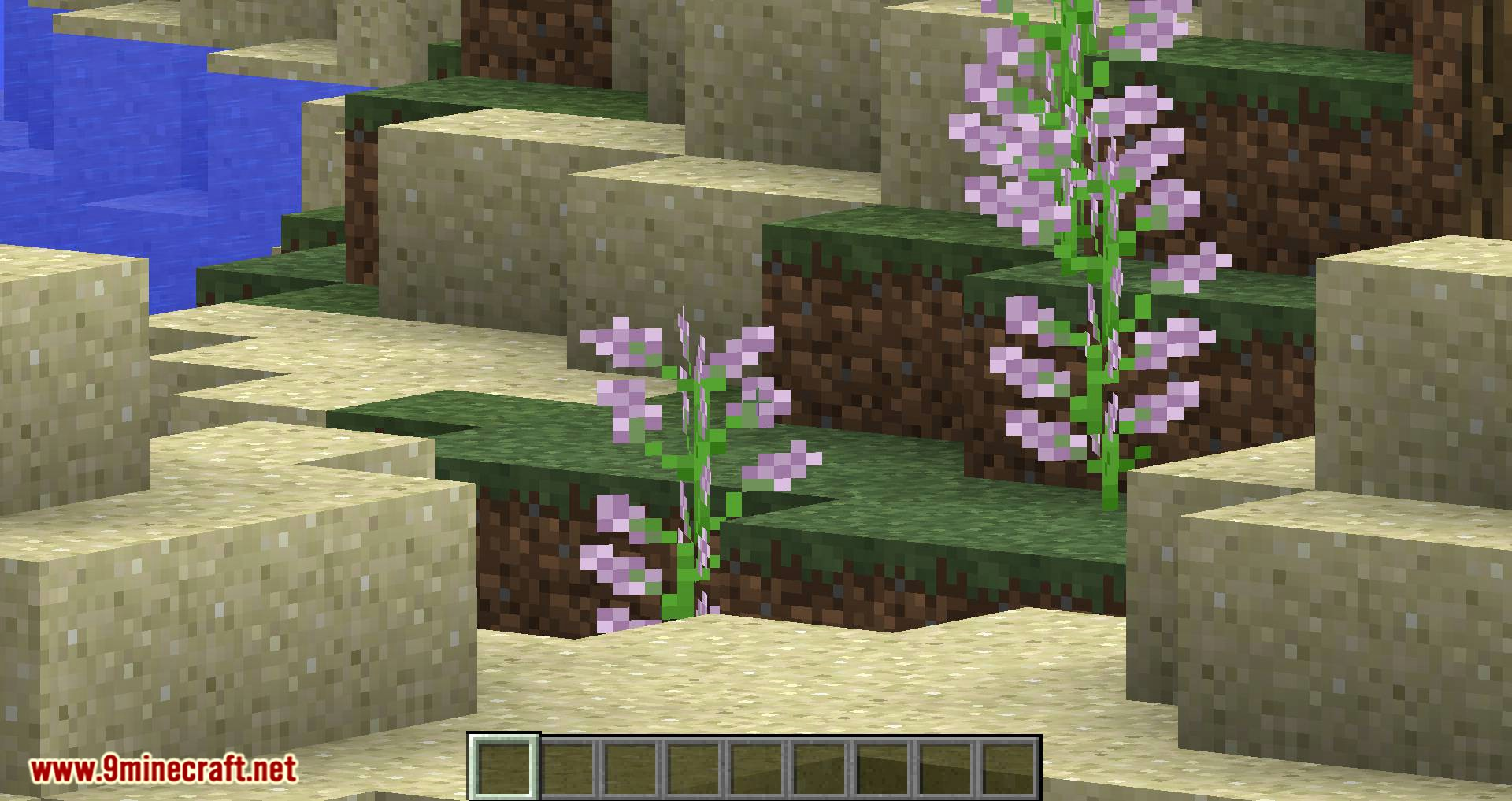 Smooth Zoom mod for minecraft 02