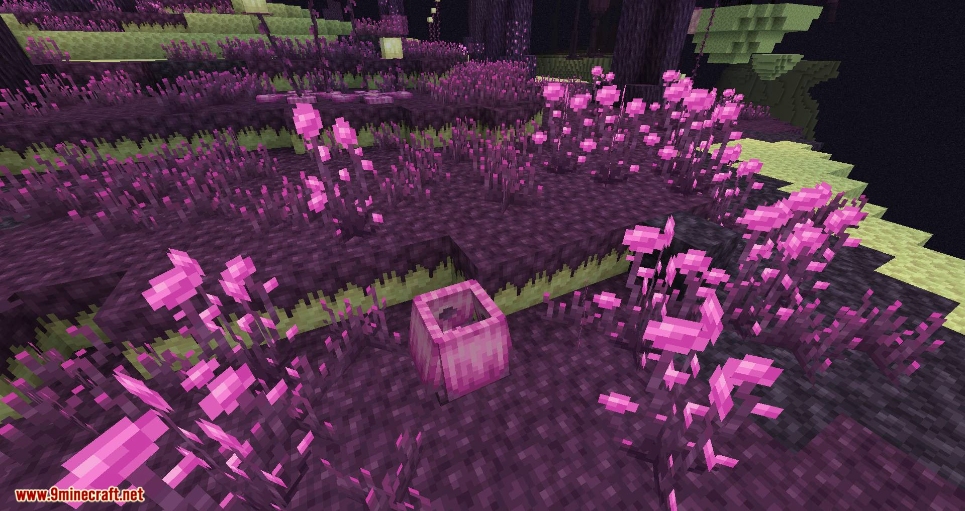 The Endergetic Expansion mod for minecraft 03
