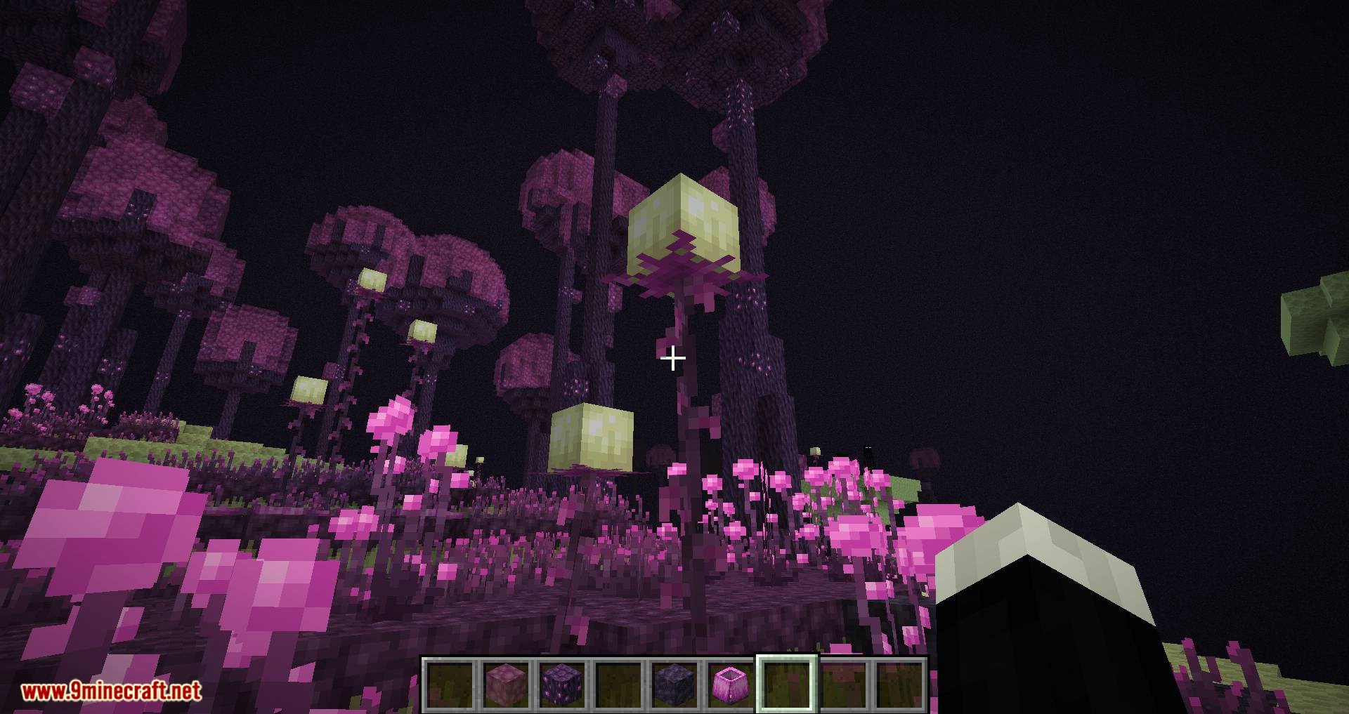 The Endergetic Expansion mod for minecraft 04