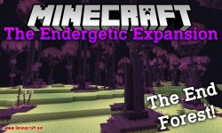 The Endergetic Expansion mod for minecraft logo
