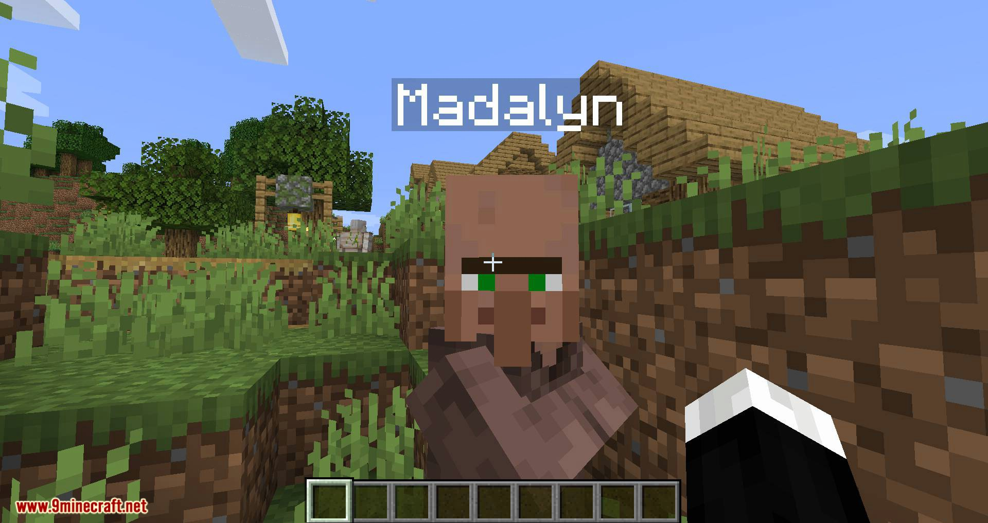 Villager Names mod for minecraft 02